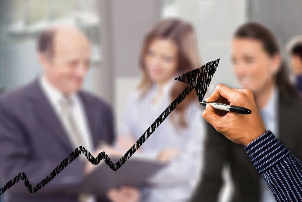 croissance audit experts